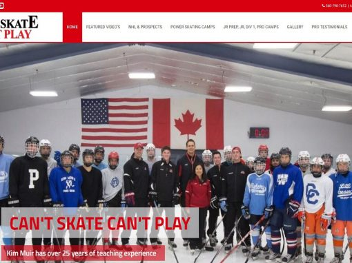 Website Design – Professional Skating Coach